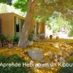 Crónicas del Ulpan de Hebreo en el Kibbutz