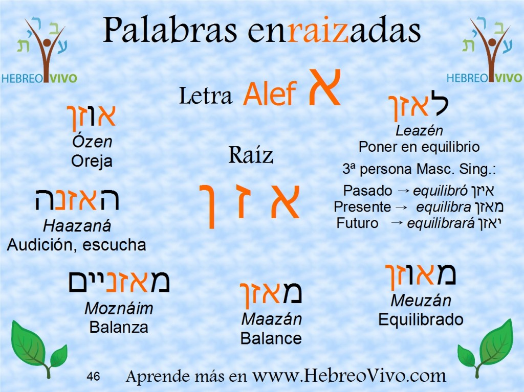 Alef 3 Meazen