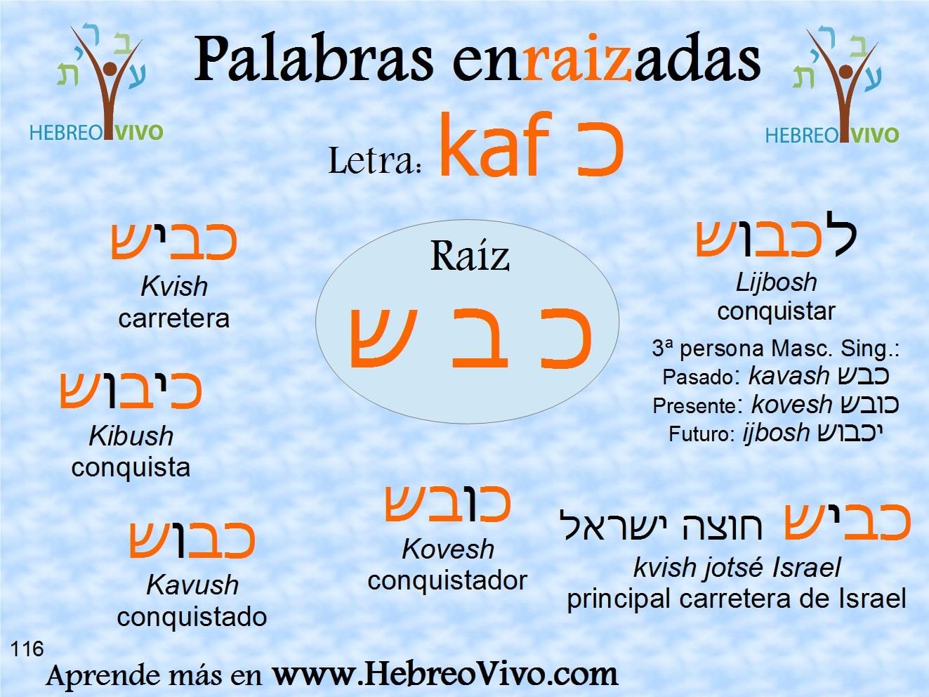 116 Kaf KAVASH